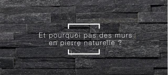 Et pourquoi pas des murs en pierre naturelle ?